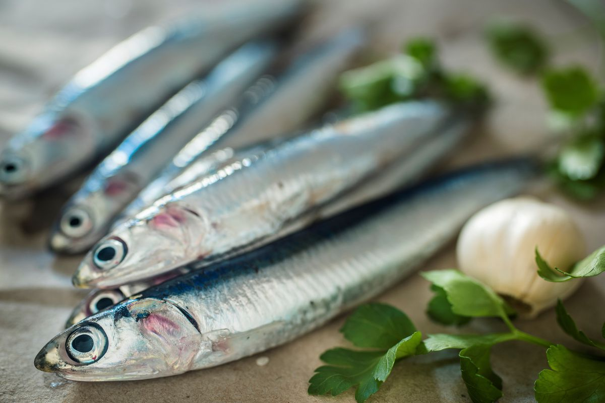 A Wine Bar Devoted to Anchovies Will Open in San Francisco photo