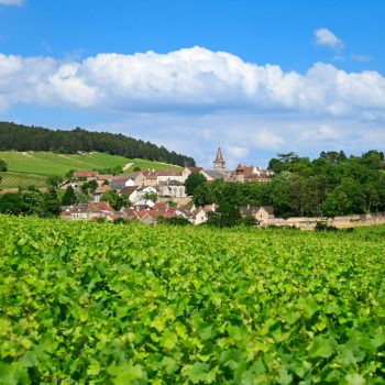 Burgundy 2018: Key Points From A Surprising Vintage photo