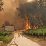 Adelaide Hills Wine Region Hit The Hardest In Devastating Australian Wild Fires photo