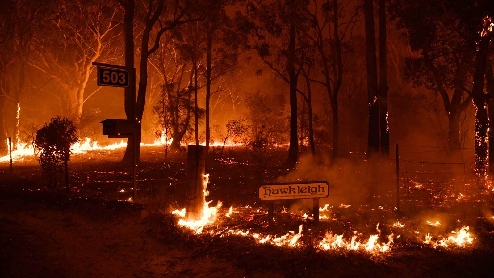 Australian Wildfires Scorch Vines In Adelaide Hills photo