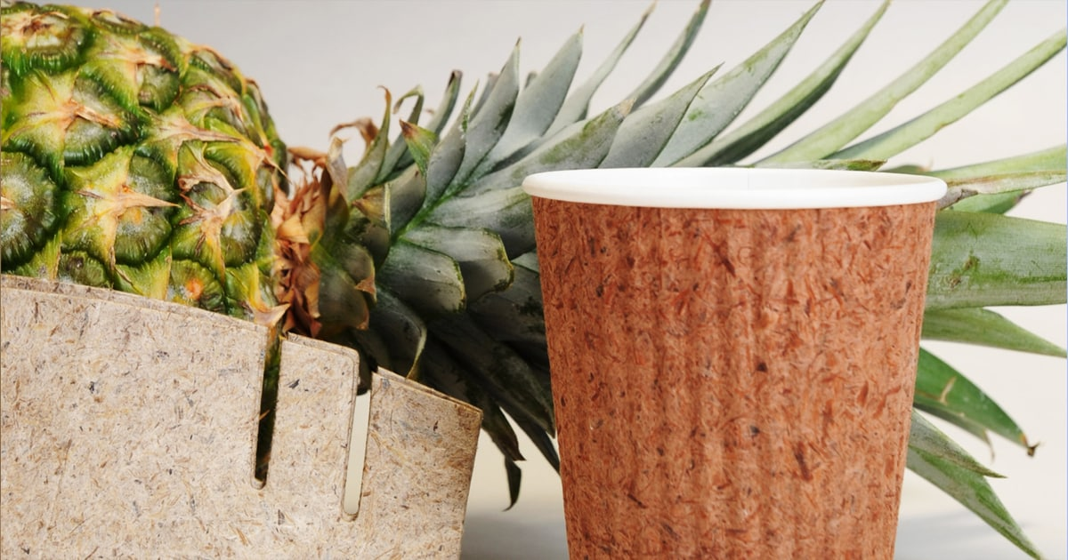 Filipinos Create Cup From Pineapple Leaves As Alternative To Plastic photo