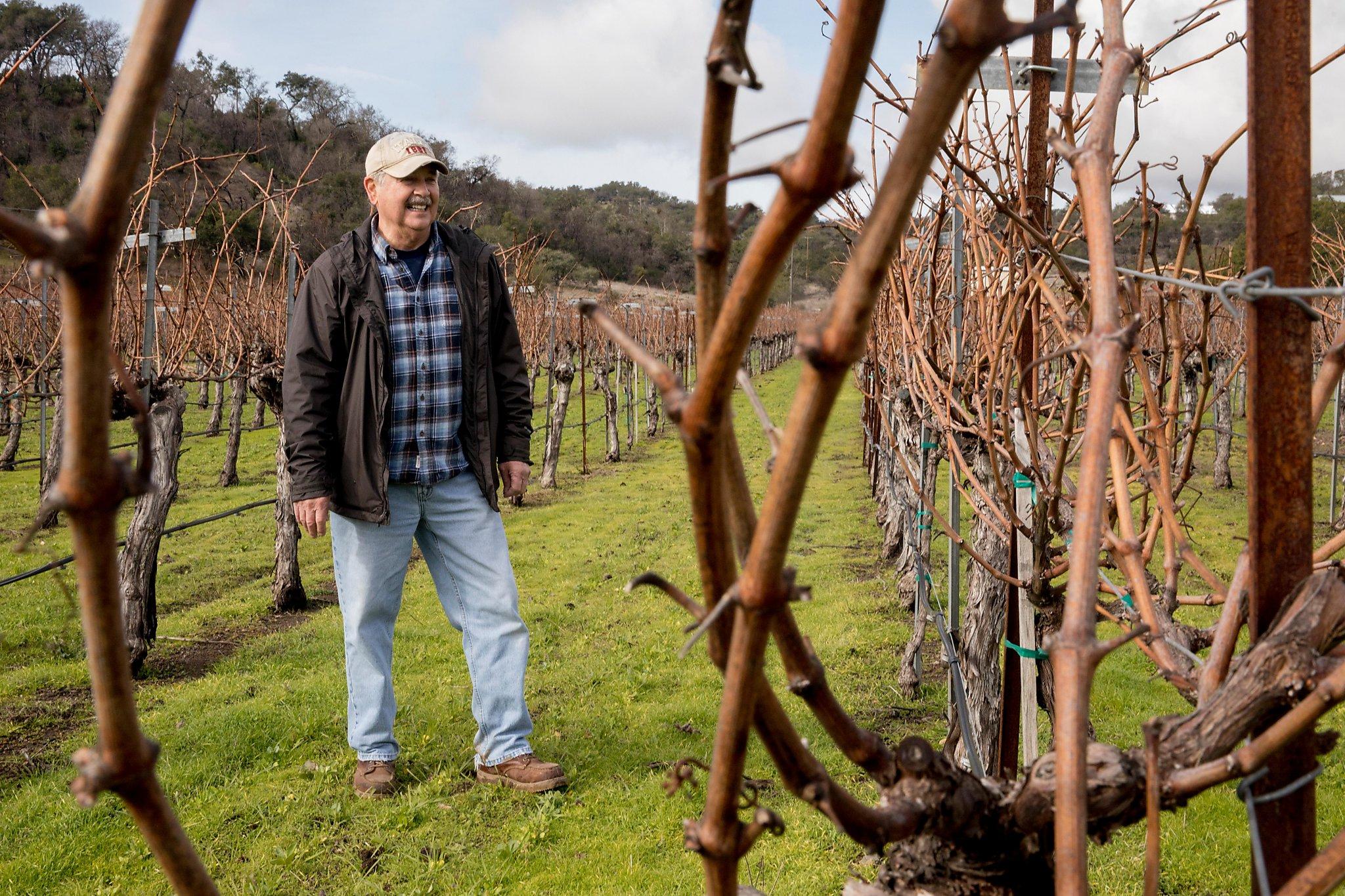 Vineyards Versus Vernal Pools: On Napa's Atlas Peak, A Neighbors' Dispute Turns Ugly photo