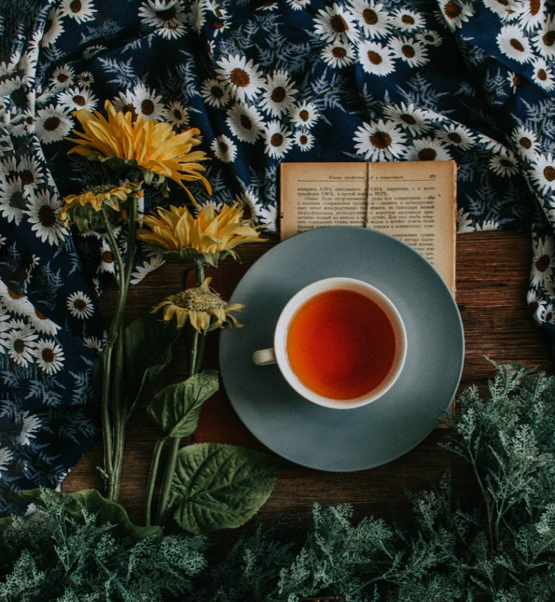 Beat The Summer Heat With A Steaming Cup Of Rooibos Tea photo