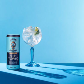 Bombay Sapphire Unveils Canned G&t photo