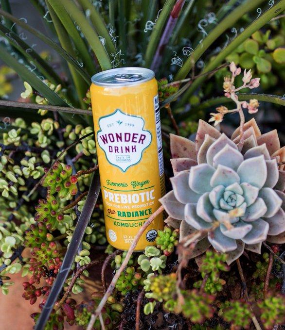 Wonder Drink Prebiotic Plus Kombucha Coming To Sprouts photo