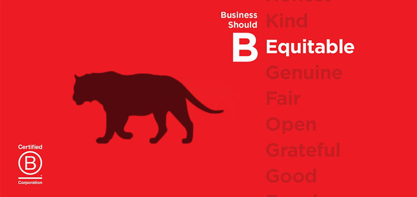 For February, Equator Is Serving Coffees From An All B Corp Supply Chain photo
