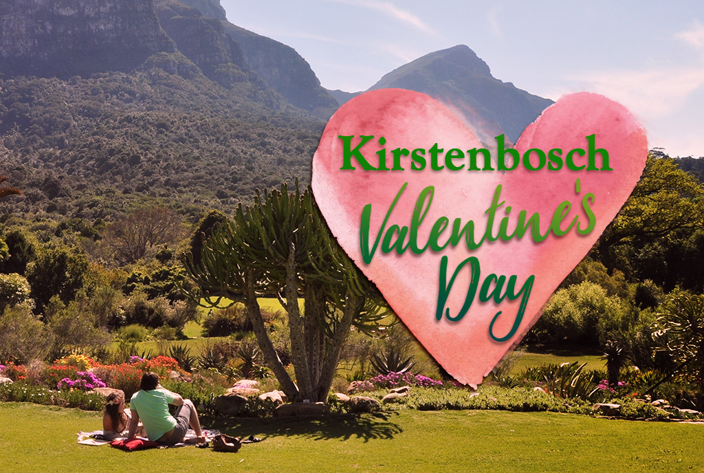 Enjoy Valentine's Day In Cape Town's Most Beautiful Garden photo