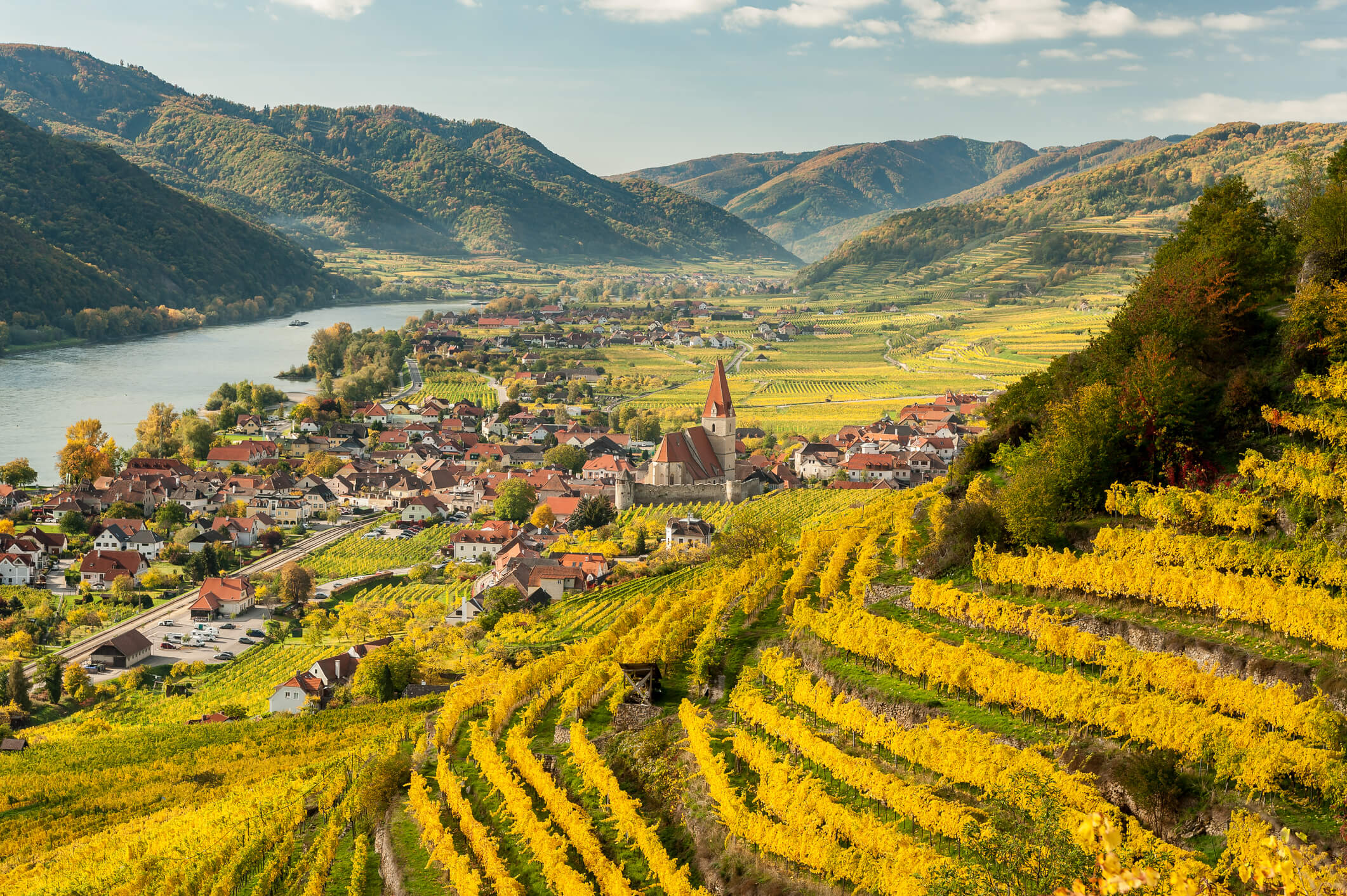 Winter Whites: 10 Elegant Austrian Chardonnays And Pinot Blancs photo