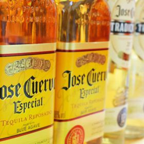 Super-premium Tequila Bolsters Becle Full-year Sales photo