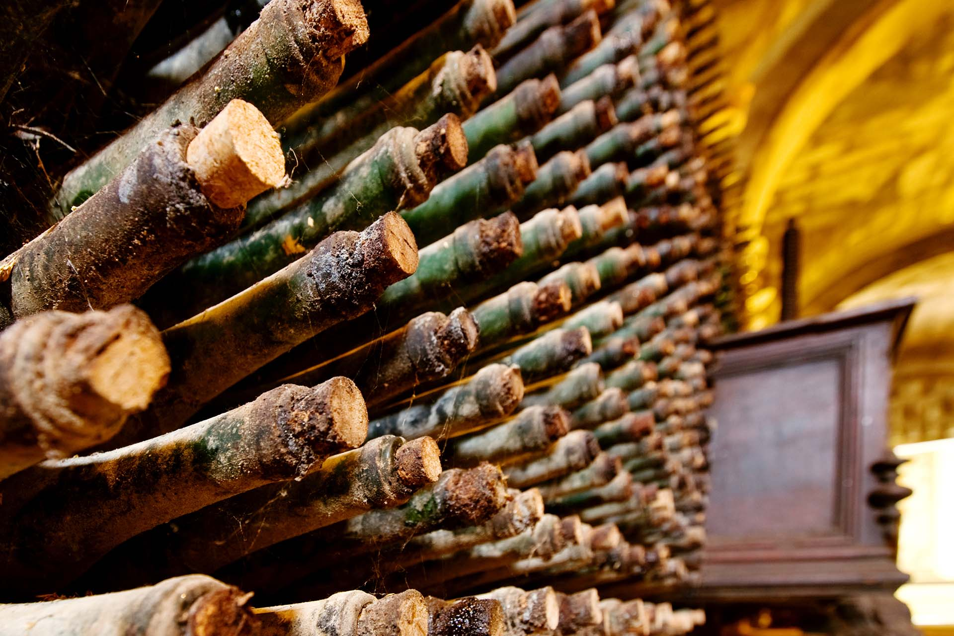 Are Moldy Corks And Bottles Bad For Wine? photo