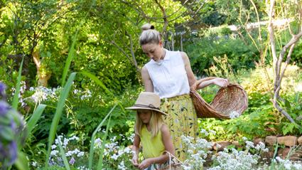 Tokara To Open Its Gardens For Annual Rare Plant Fair photo