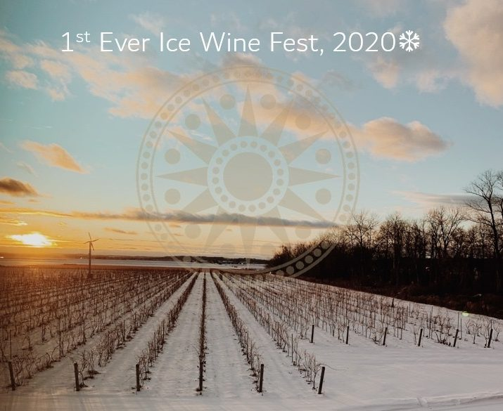 Holland Marsh Wineries Hosting First Ice Wine Fest photo