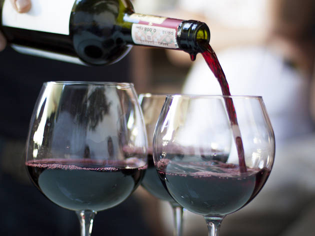 Malbec Festival at Benguela Cove photo