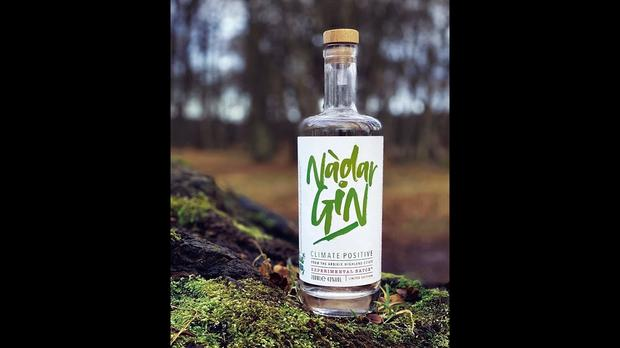 Watch: Peas Used In World's First 'climate Positive' Gin photo