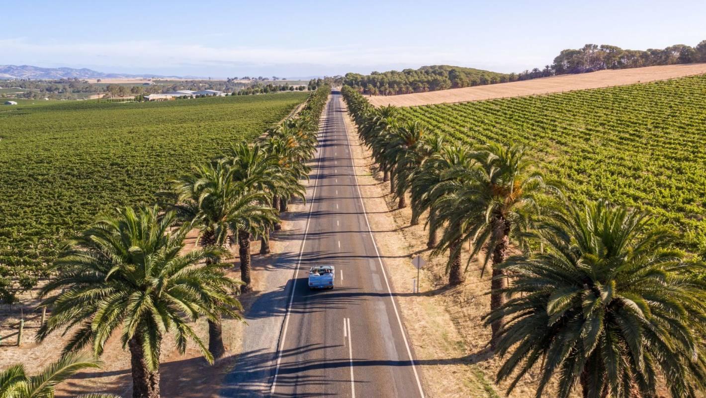 The Ultimate Aussie Wine Escapes photo
