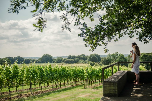 Gusbourne Releases New Selection Of Still Wines photo