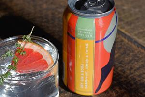Mixology In A Can: Collective Arts Launches Sparkling Gin Canned Cocktails Made With Craft Gin & Real Ingredients photo