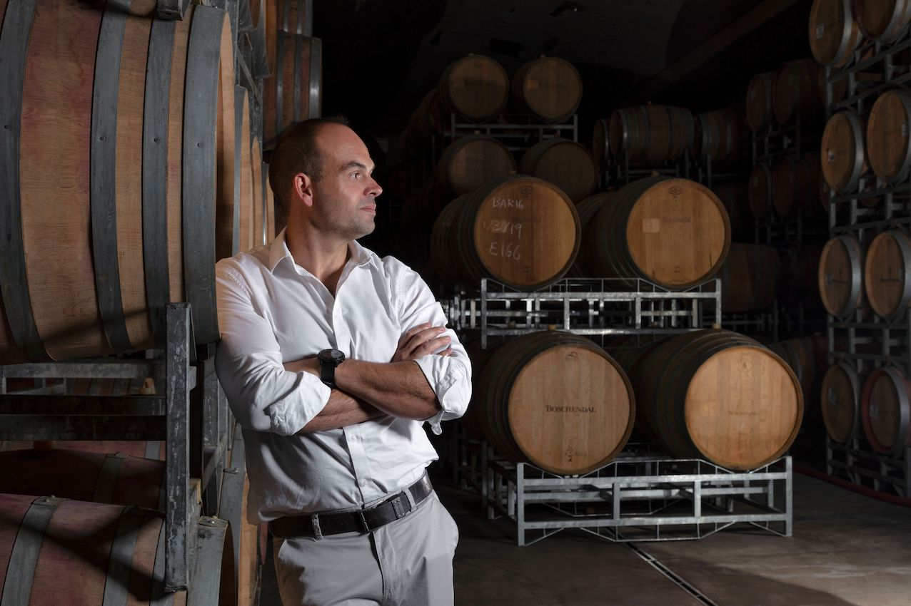 South African Wines In For Blockbuster Harvest photo
