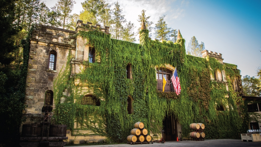 Chateau Montelena Offers Virtual Wine Tasting photo