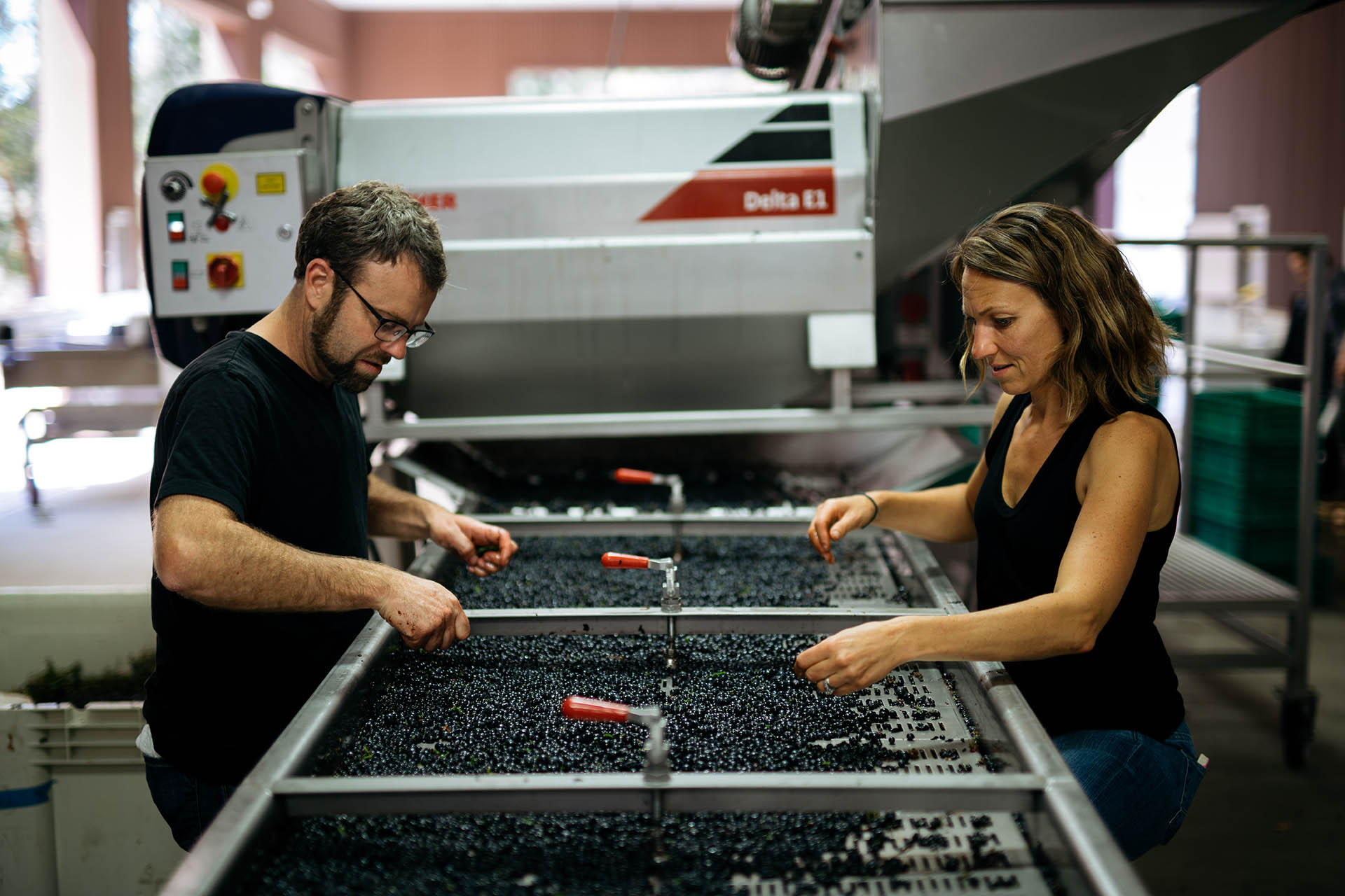 Napa Winemakers' After-hours Passion Projects Fuel Creativity And Community photo