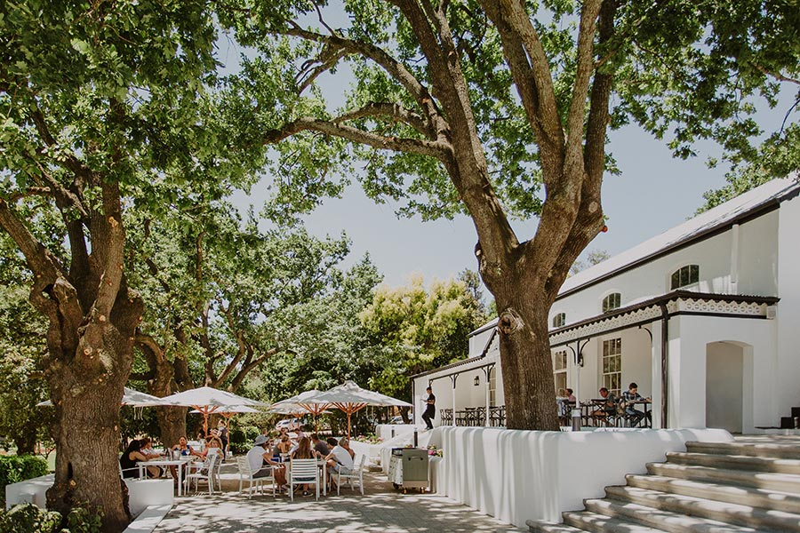 Rhebokskloof Wine Estate Unveils Newly Designed Restaurant photo