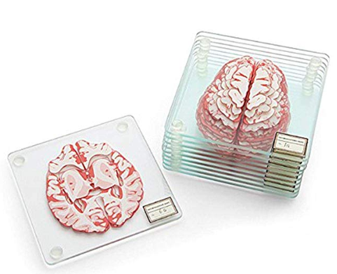 Brain Specimen Coasters photo