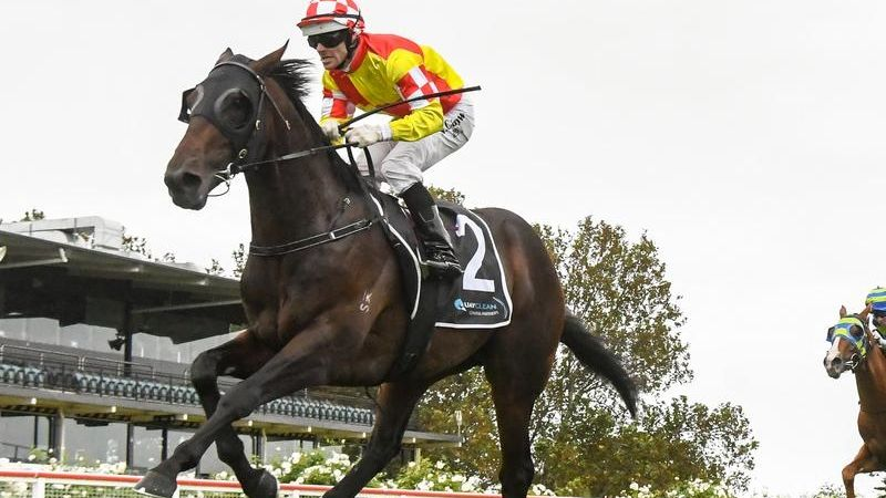 Glenfiddich To Chase Sydney Autumn Riches photo