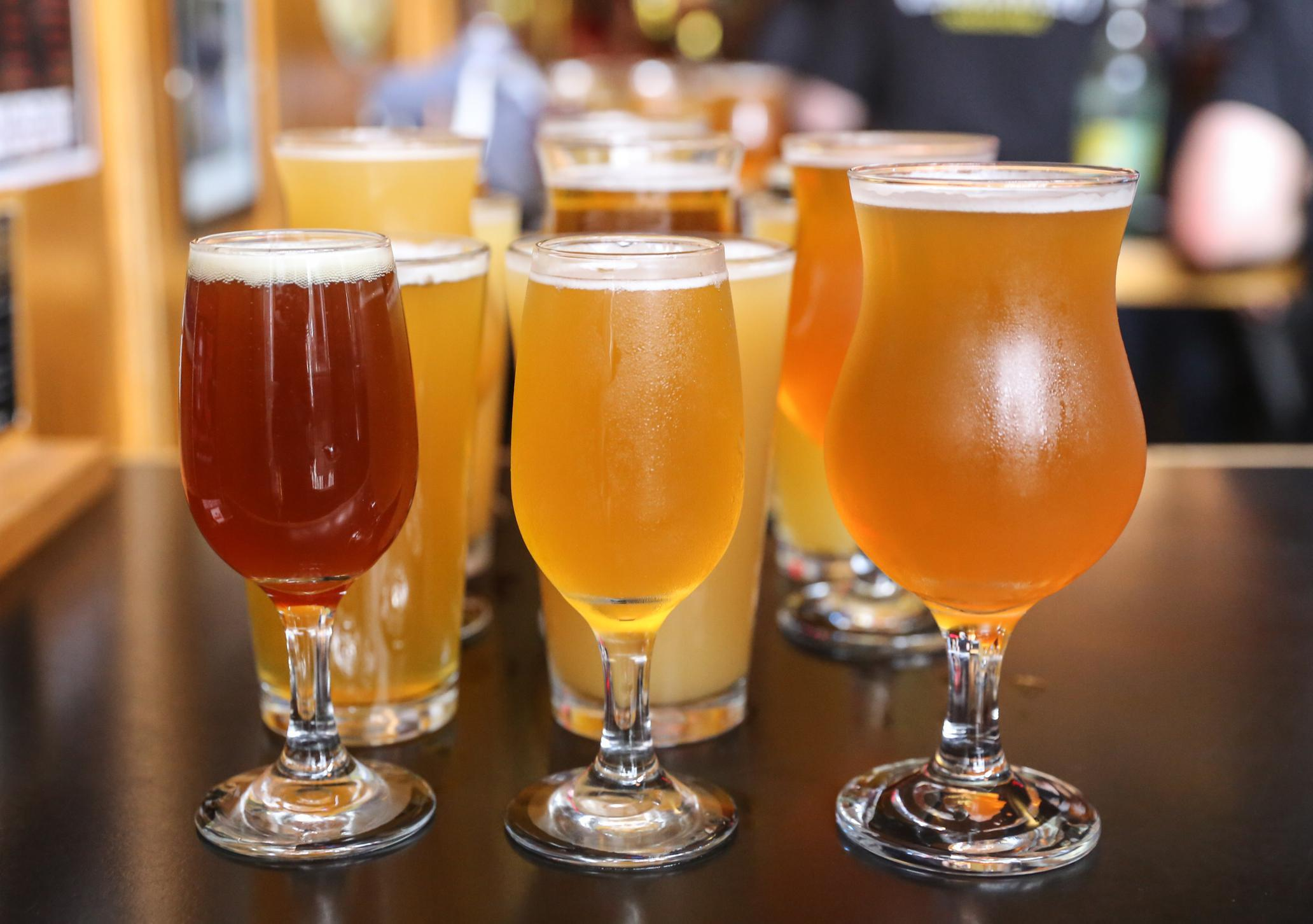 What's The Difference Between A Lager And An Ale? And Other Beer photo