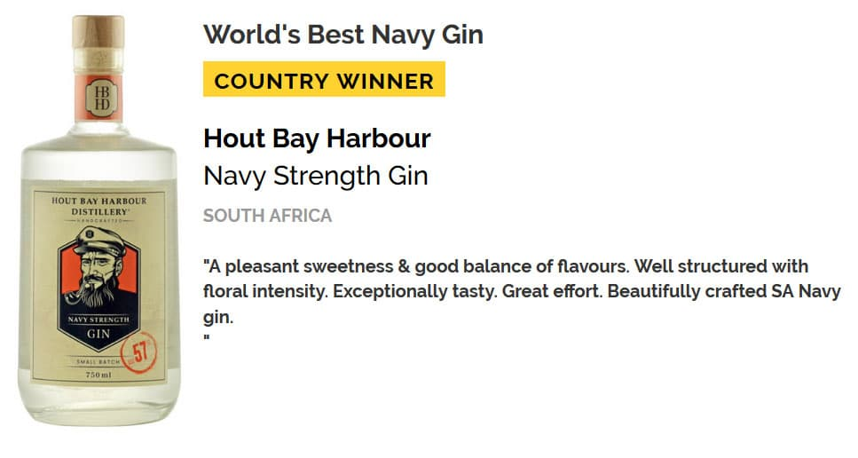 Global Gin Award For South African Beverage Entrepreneur photo
