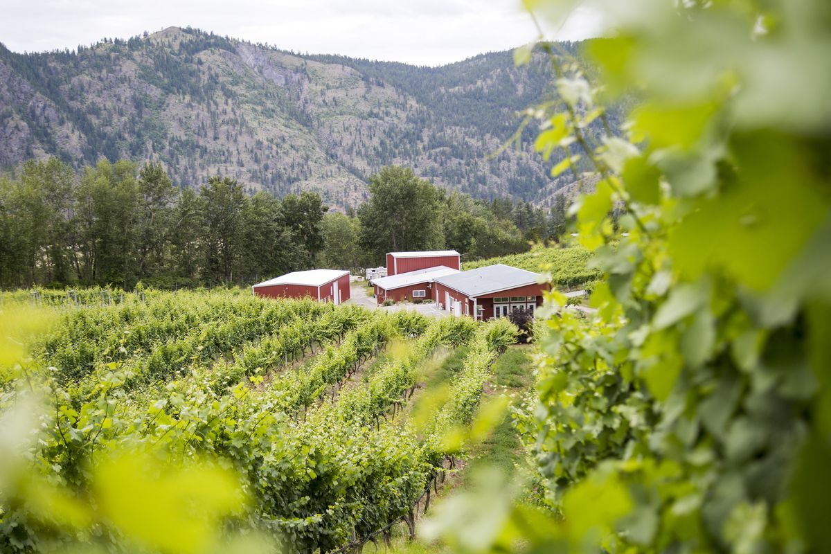 Eight Tasty Ways To Support Canadian Wineries photo