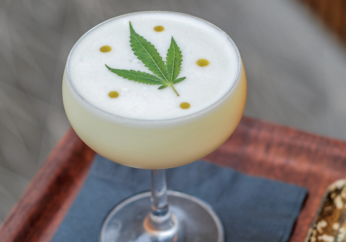 CBD And Drink Pairings That Perfectly Compliment Self-Quarantine photo