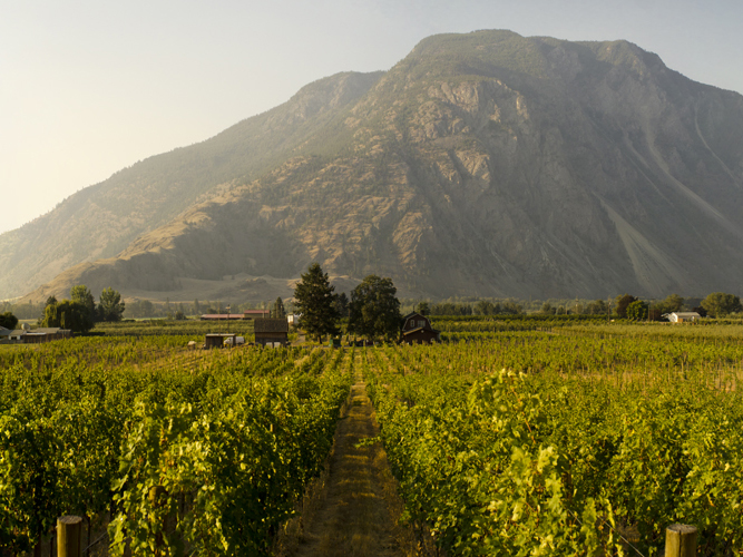 French-inspired Wines Of The Similkameen Valley photo