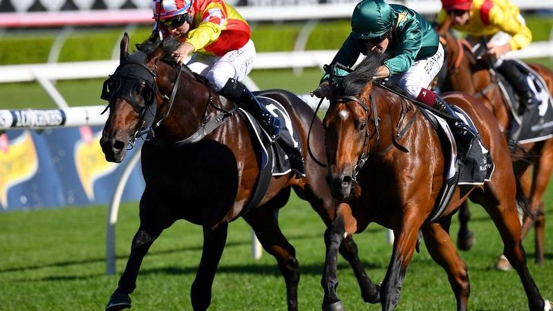 Caulfield Guineas The Aim For Glenfiddich photo