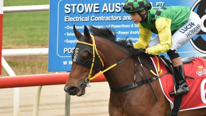 Hodder Dominates The Track At Port Race Meet photo