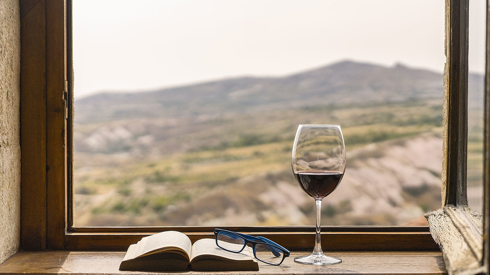 Essential Wine Books To Read While Staying Home photo