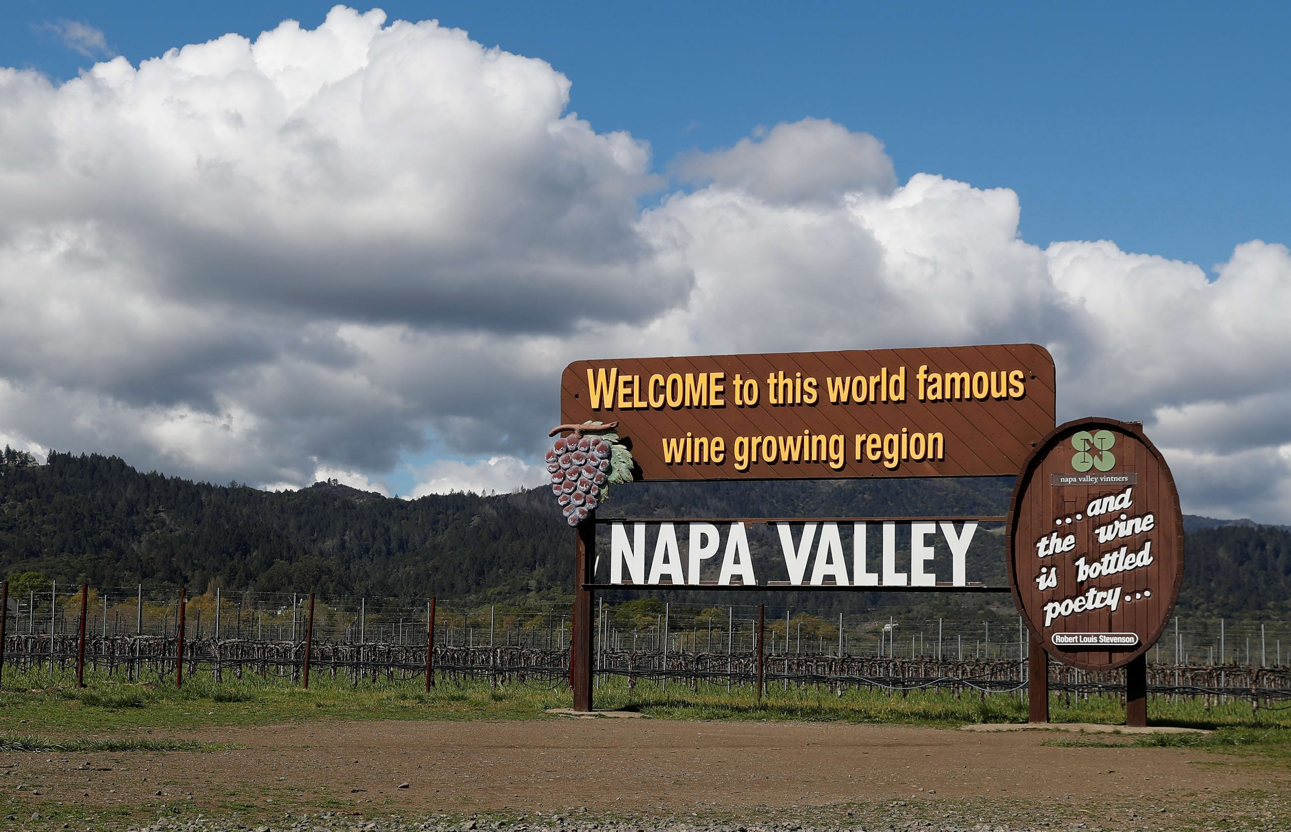Bring Your Own Mask: Napa Valley Wineries Get Ready For Reopening photo