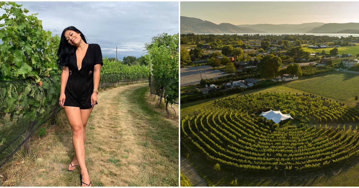 Canada's Only Wine Labyrinth Is Hidden In Bc & It's Enchanting photo