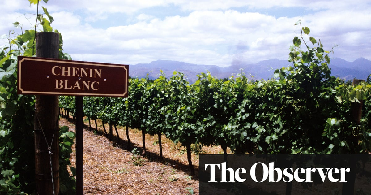 South African Wines To Beat The Lockdown photo