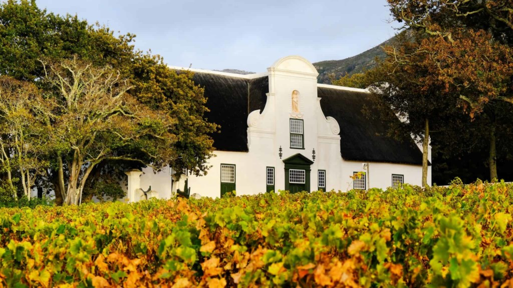 Tim James: The Story Of Cabernet In The Cape photo