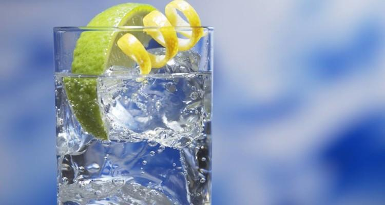 New Edinburgh Drinks Delivery Service Gin Drop Launches photo