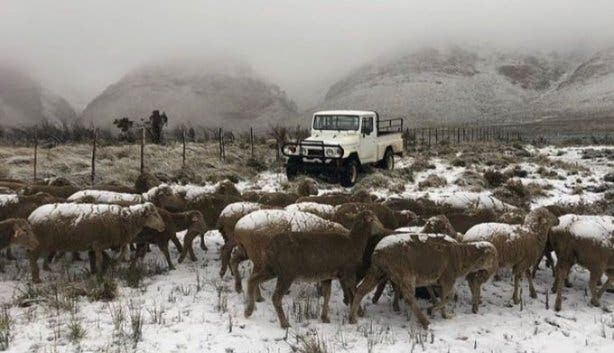 It's Snowing In The Western Cape, And It's Beautiful photo