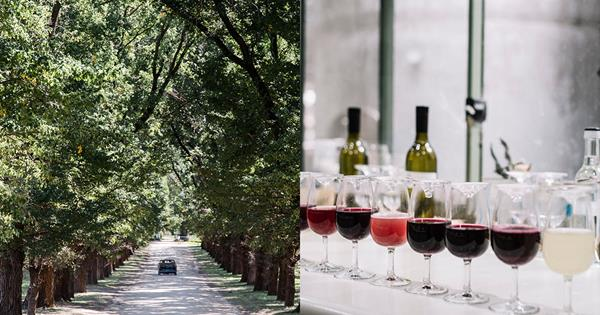 72 Hours In Victoria's High Country Wine Regions photo
