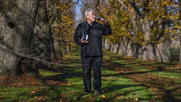 'drop Dead Beautiful': A Day Tripper's Guide To Leading Wine Region The Yarra Valley photo