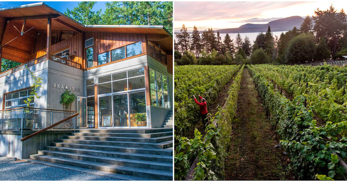 This Oceanfront Winery In Bc Is For Sale & You Can Actually Live There Too photo