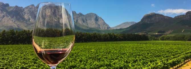 Whiskey Edges Wine In Lockdown Boom photo