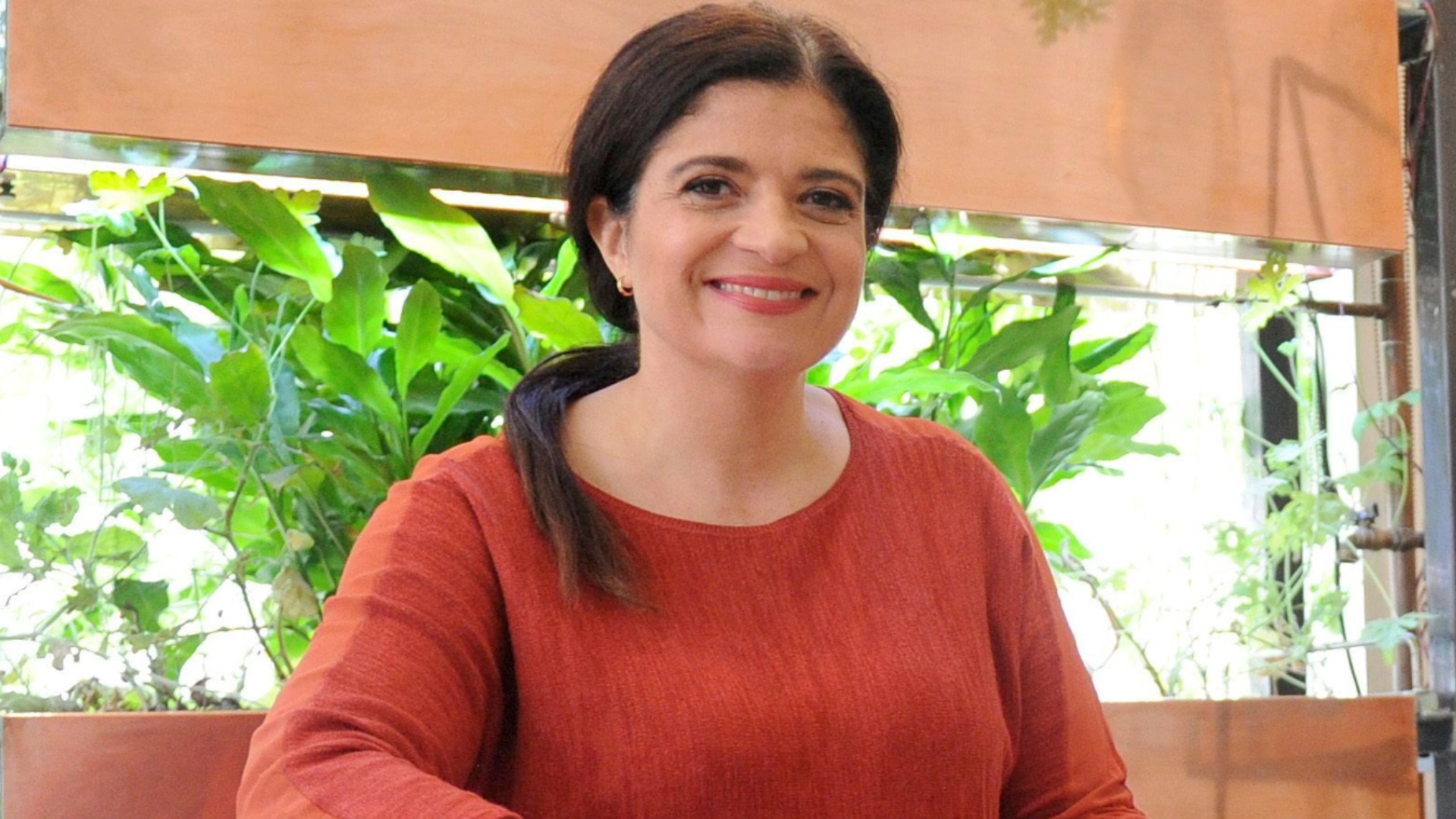 Alex Guarnaschelli Shares A Yummy Recipe For Your New Go-to Summer Drink photo