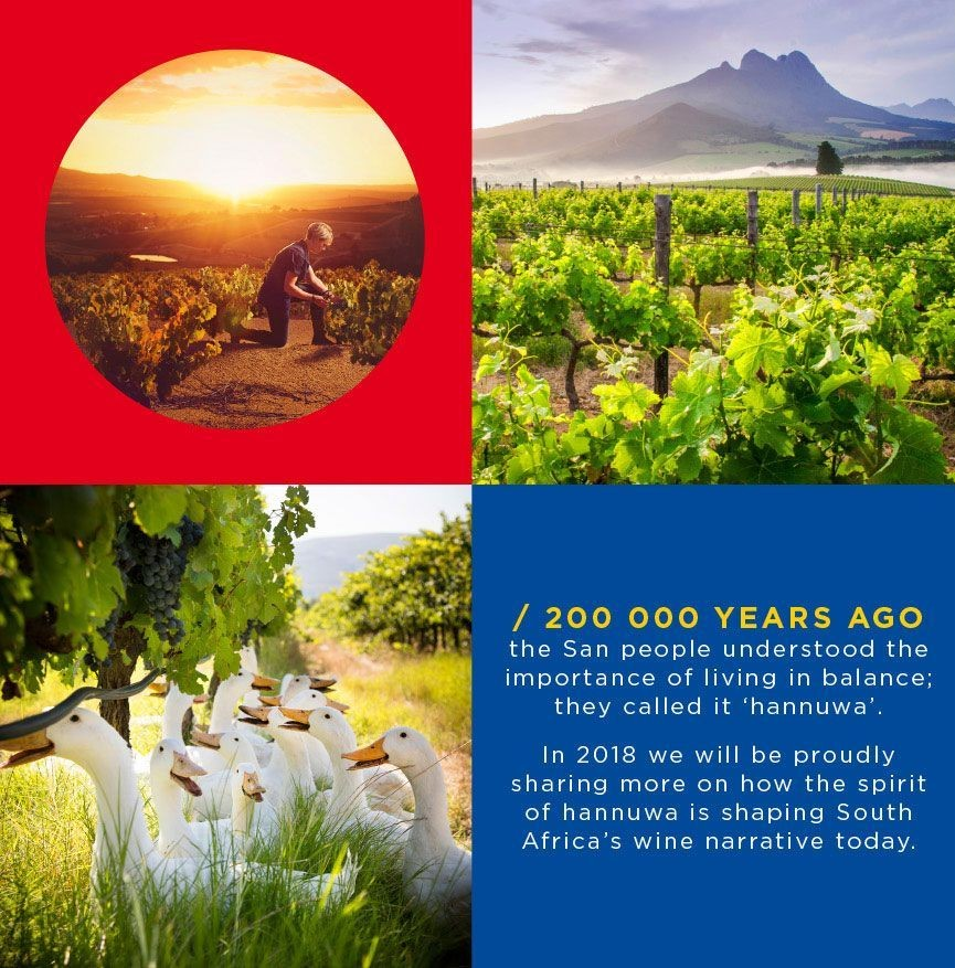 CapeWine 2021 Postponed To October 2022 photo
