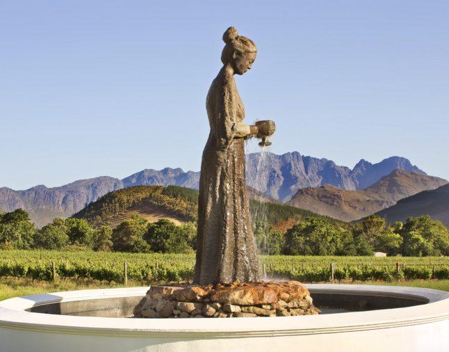 Enjoy the Best of Wine Tourism at La Motte photo