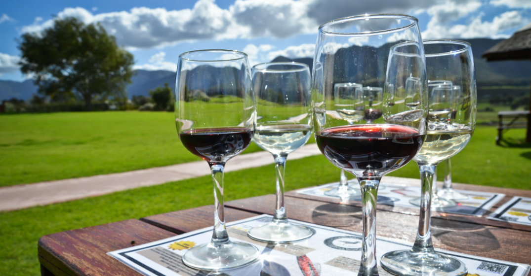 Wine Producers Finding Ways To Thrive During Covid-19 photo