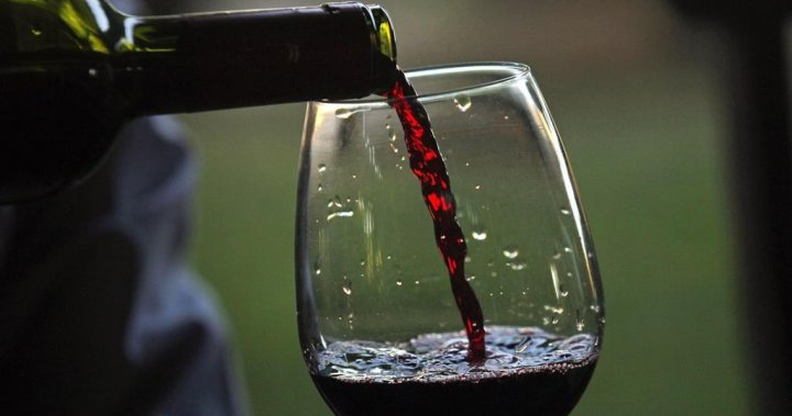 1 Glass, Not 2 Or 3: Study Says Canada's Drinking Guidelines Are Too High photo